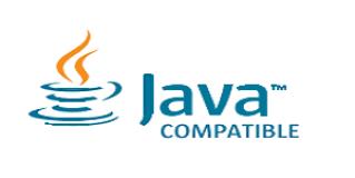 Java Programming for SAS Viya